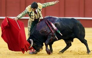 El diestro Morante de la Puebla da un pase con la muleta a su segundo toro durante el sexto festejo de abono de la Feria de Málaga. / Jorge Zapata (EFE)
