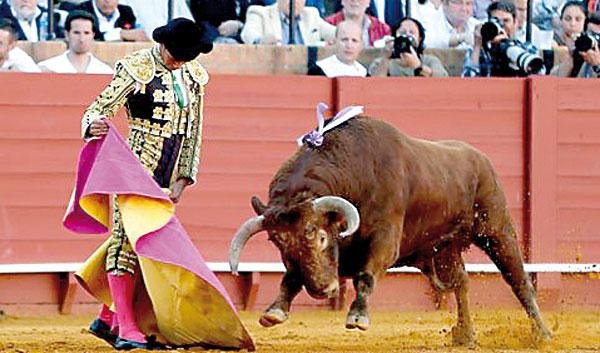 José Ruiz Muñoz ha constituido una de las sorpresas novilleriles más gratas. / El Correo
