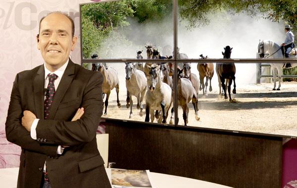 Víctor García Rayo dirige y presenta 'El toro y el caballo'.
