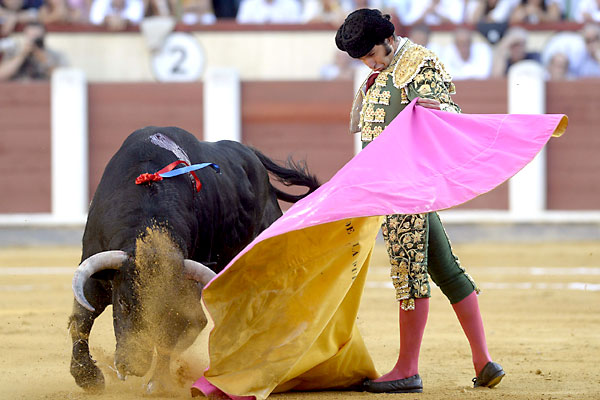 El diestro Morante de la Puebla, torea con el capote a uno de sus toros. / EFE