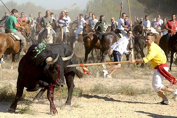 Festejo del Toro de la Vega. / EFE