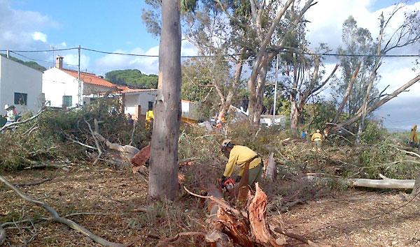 Bomberos retiran restos de árboles por los fuertes vientos el Valdelamusa. / @E112Andalucia