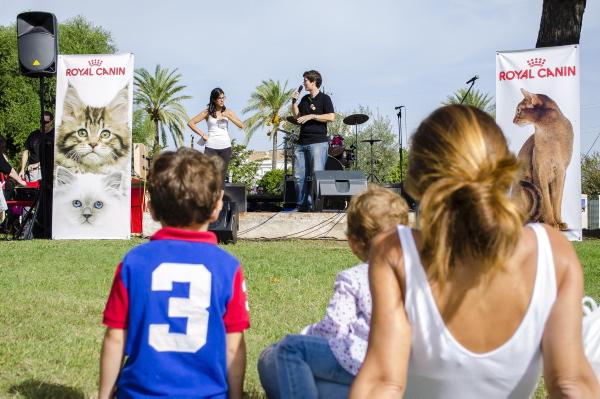 El Parque del Alamillo fue el escenario de la cita 'gatuna' que contó con charlas, actuaciones y un ambigú . / Foto: Jesús Barrera