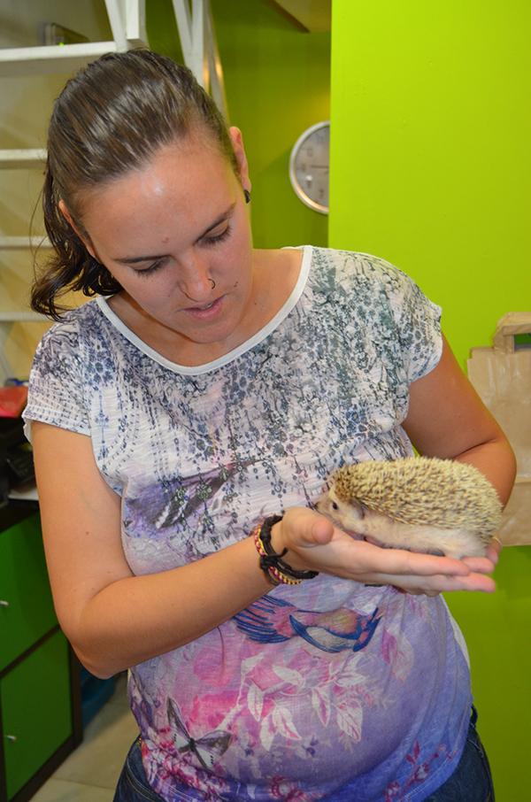 Patricia Ruiz con su mascota, un erizo africano de nombre Trufa. / L.R.