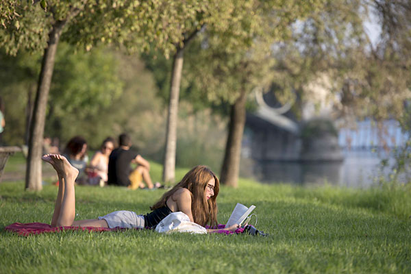 Sigue el buen tiempo con temperaturas agradables en Sevilla. / J.M.Paisano
