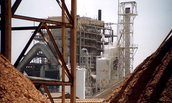 Fábrica de celulosa de Ence en Huelva. / Antonio de la Cerda
