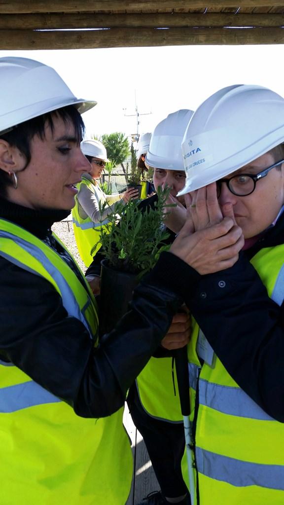 Interpretación vegetacion clc (1)