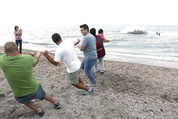 Varios vecinos intentan arrastrar a la orilla al cetáceo. / EFE