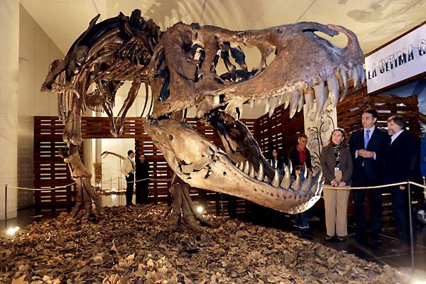 Exposición Dinopétrea en el Pabellón de la Navegación de Sevilla. / José Luis Montero
