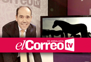 visor-toro-caballo-nuevo