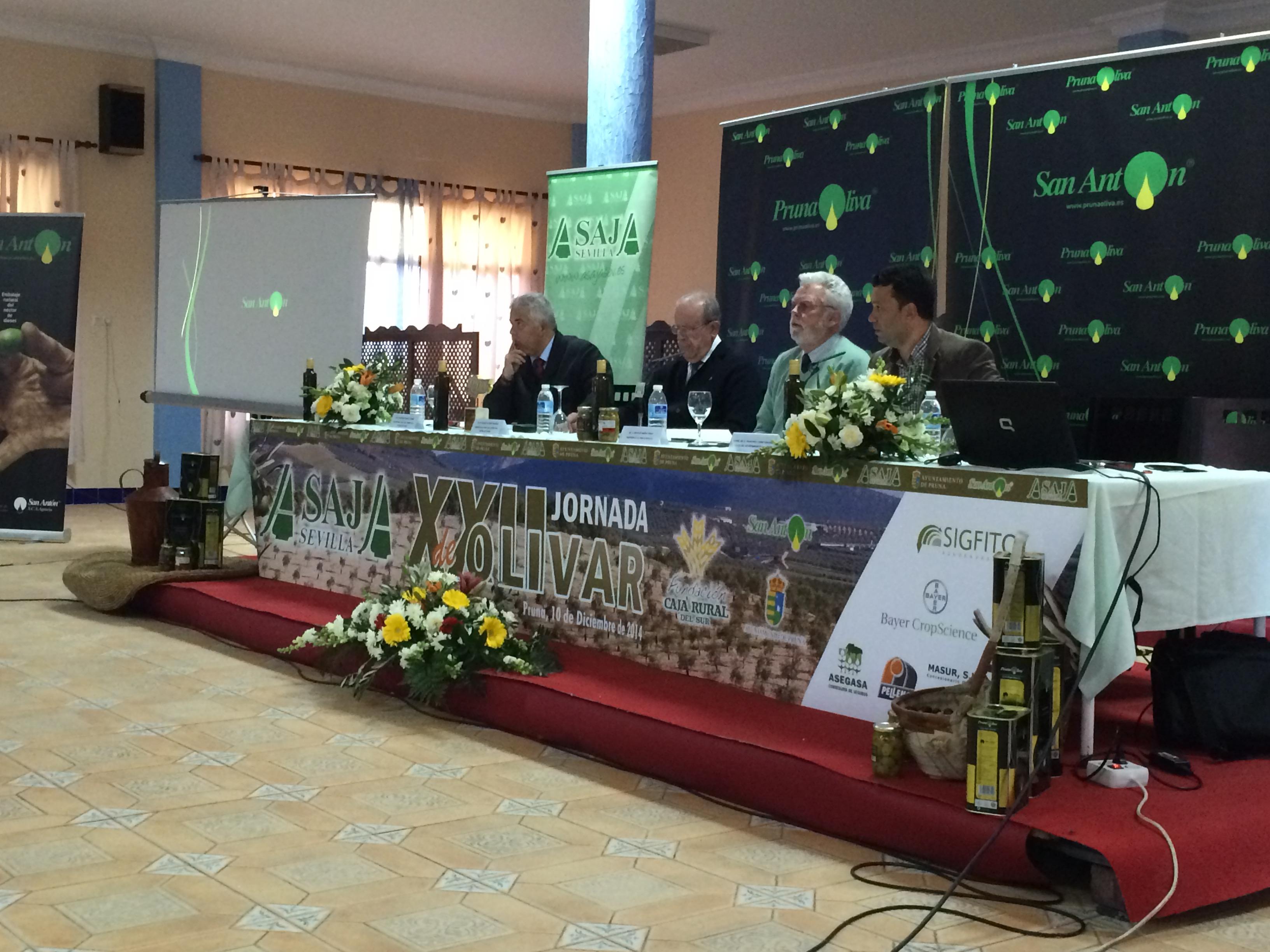La XXII Jornada de Olivar se celebró ayer ante más de 200 olivareros. / El Correo