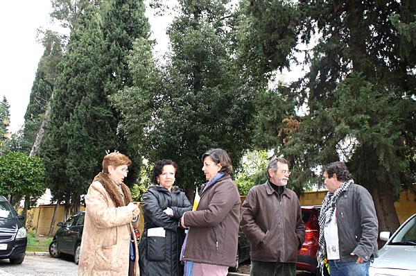 Medrano-arboricidio2