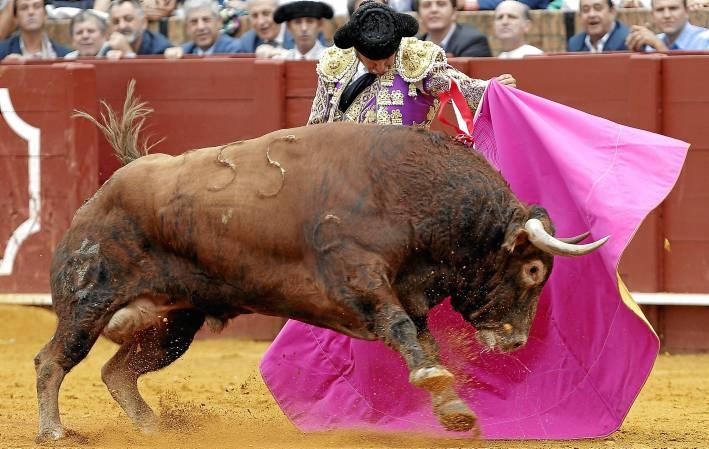 Morante en un lance en la Feria de 2013, la última temporada en la que se anunció en los carteles de la Maestranza. / Efe