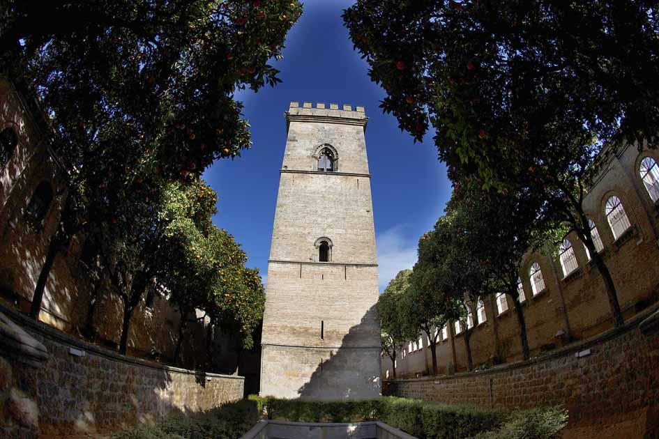 Sevilla 22/01/2015 Torre de don FadriqueFOTO: Pepo Herrera