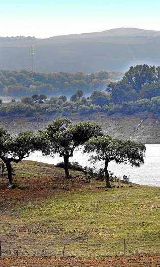 Vista de una de las fincas enclavadas en la provincia de Córdoba. / EFE